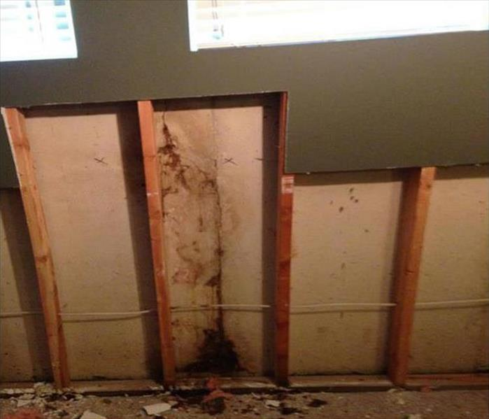 Mold Damaged Wall in a Small Rochester Office Before