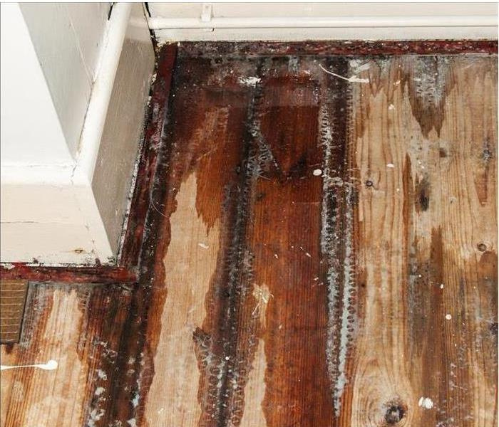 Somersworth Water Damage