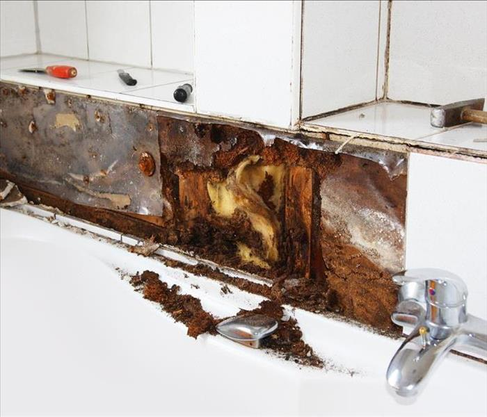 Dover Mold and Water Damage