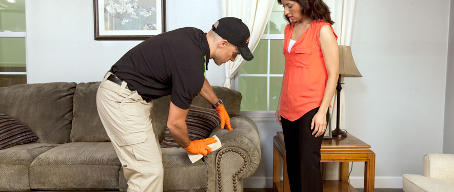 Dover, NH carpet upholstery cleaning